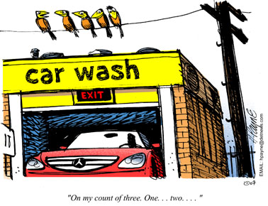 1016CARtoonCarWashBirds